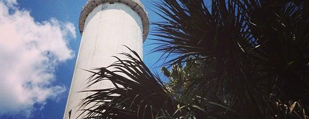 Sulphur Springs Water Tower is one of Tampa.