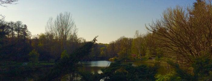 Atatürk Arboretumu is one of Lieux qui ont plu à Demet.