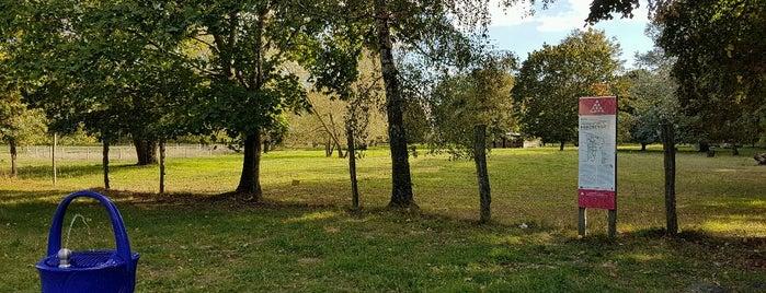 Landschaftspark Herzberge is one of Karina 님이 저장한 장소.