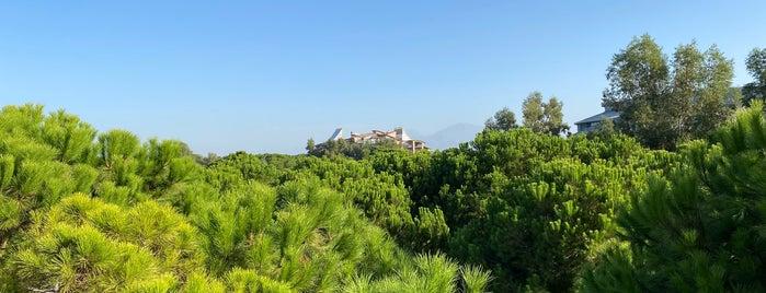 Selectum Luxury Resort is one of Antalya II.