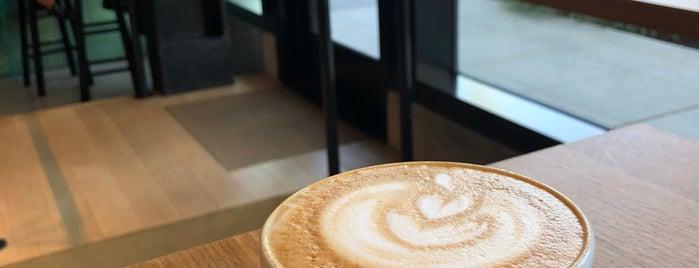Elm Coffee Roasters is one of G&S Seattle.