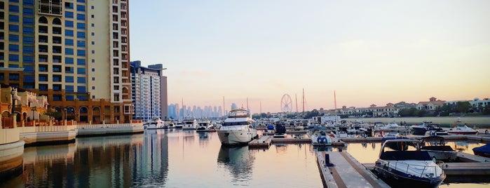 Senara Restaurant is one of The Dog's Bollocks' Dubai.