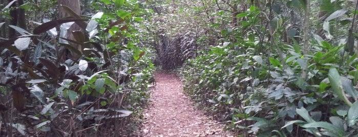 Parque Guarapiranga is one of Viagens.