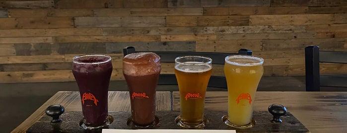 Arkane Aleworks is one of Breweries 🍺.