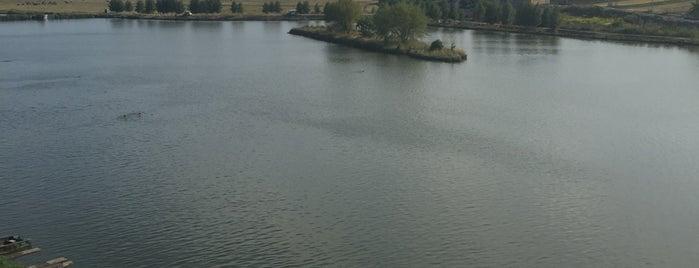 Парк-готель Швейцарія is one of สถานที่ที่ Manu ถูกใจ.