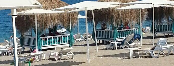 Botanik Beach Club is one of Emin : понравившиеся места.