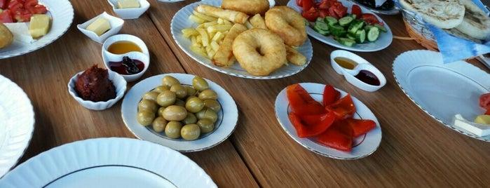 Posti che sono piaciuti a Tuğrul