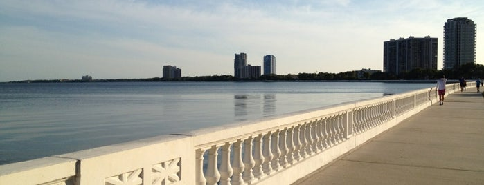 Running Trail @ Bayshore is one of Florida.