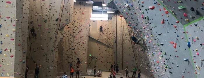 Movement Climbing Gym is one of Angelさんのお気に入りスポット.