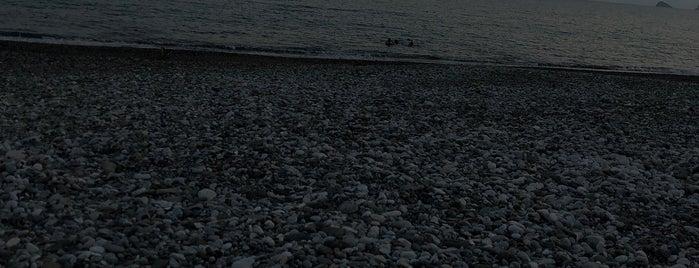 Sea Pearl is one of Yurdun 4-1 köşesi.