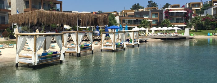 X Beach is one of Bodrum.