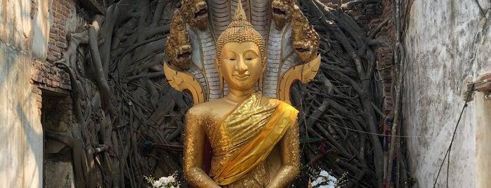 วัดสังกระต่าย is one of Yodpha's Liked Places.