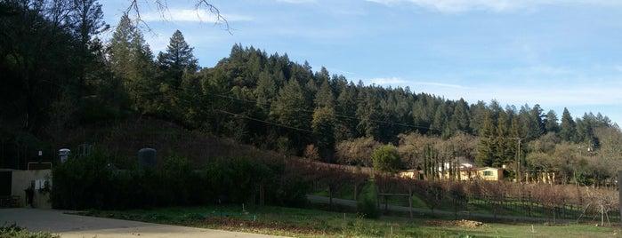Brasswood Napa Valley is one of Lugares favoritos de Denis.