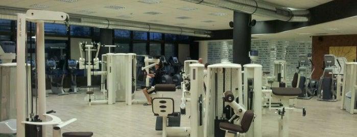 4P Fitness is one of สถานที่ที่ Saso ถูกใจ.
