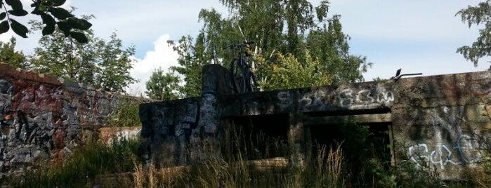 Toppelundin linnoituksen rauniot ja juoksuhaudat is one of Достопримечательности Финляндии.