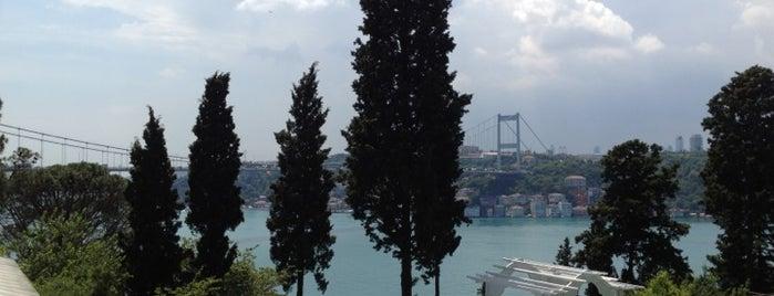 Mihrabat Korusu is one of istanbul gezi listesi.