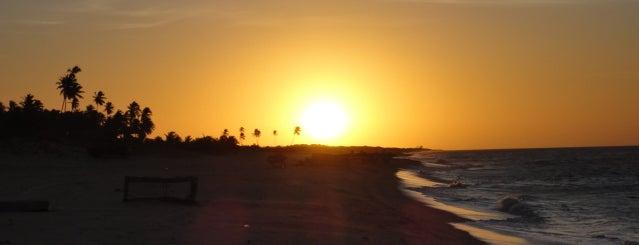 Praia Maceio is one of Gostoso.