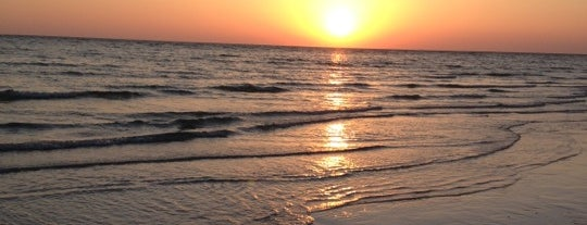 Honeymoon Island State Park is one of Stevenson Favorite US Beaches.