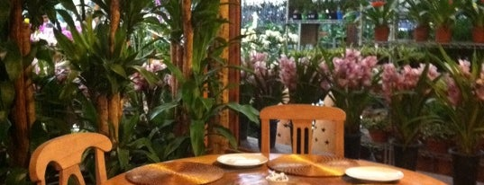 Gourmet Tropical is one of Restaurantes.