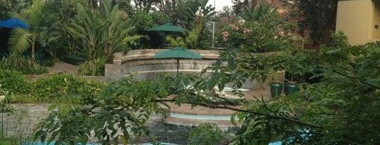 Kigali Serena Hotel is one of Visiting Kigali.