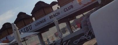 Malibu Lounge Club is one of Drinks, clubs & lounge.