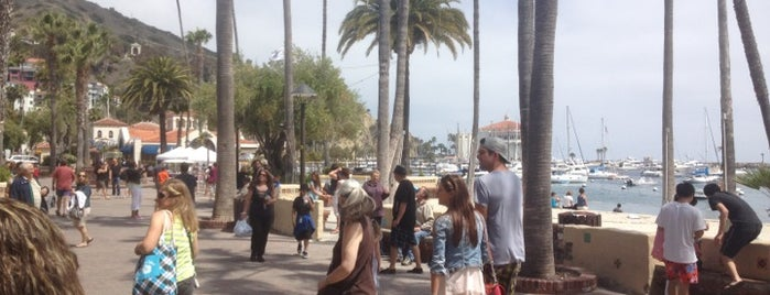 Santa Catalina Island is one of Alicia's Top 200 Places Conquered & <3.