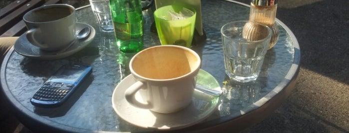 Teneo Coffee Shop is one of World Coffee Shops.