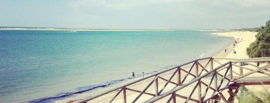 Playa de El Portil is one of Rocío 님이 좋아한 장소.