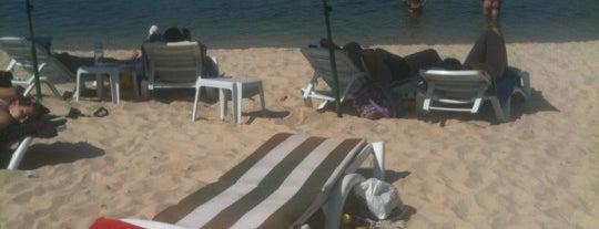 Пляж Дукан Рица is one of สถานที่ที่ V͜͡l͜͡a͜͡d͜͡y͜͡S͜͡l͜͡a͜͡v͜͡a͜͡ ถูกใจ.