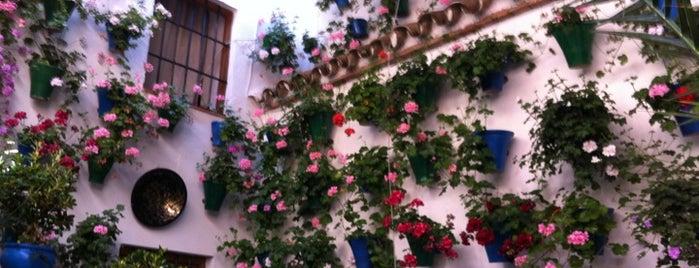 Casa-patio de la calle Guzmanas, 2 is one of Visita virtual a los Patios de cordoba.