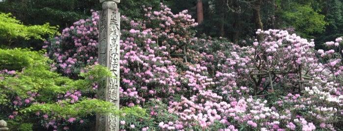 金剛三昧院 is one of World heritage - KOYASAN.