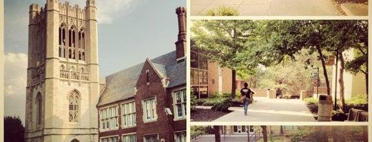 New Jersey City University is one of Diana : понравившиеся места.