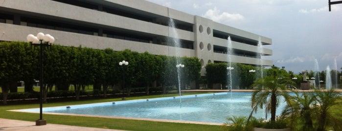 Universidad La Salle Noroeste is one of Universidades La Salle de Mexico.