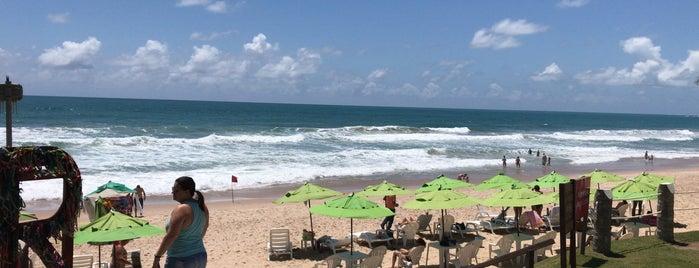 Praia de Porto de Galinhas is one of Tempat yang Disukai Paula.
