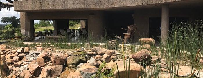 Earth Lodge Sabi Sabi is one of South Africa.