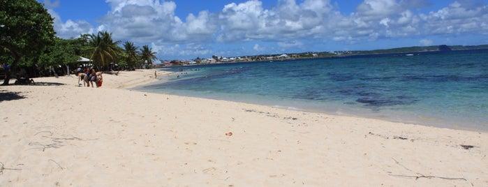 Plage de l'Autre Bord is one of Martinique & Guadeloupe.