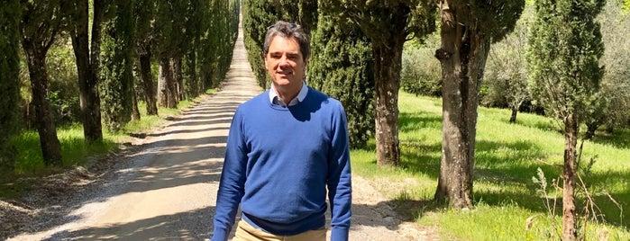 Villa Arceno is one of Chianti Classico Producers.
