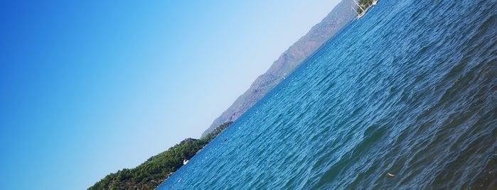 Orhaniye İncir is one of Ege ve Akdeniz.