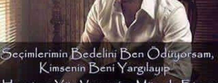 Best Van Turizm is one of Büyük İstanbul Otogarı.