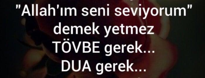 Silivri Erkek Öğrenci Yurdu is one of Lieux qui ont plu à fatih.