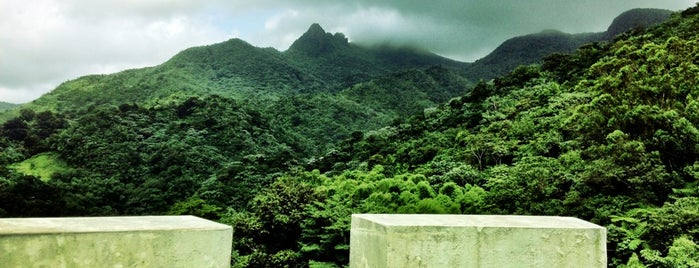 El Yunque National Forest is one of ΦIA 81st National Convention.