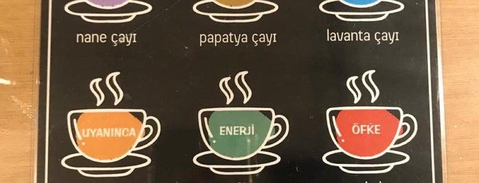 Daydream Café is one of Orte, die Erkan gefallen.