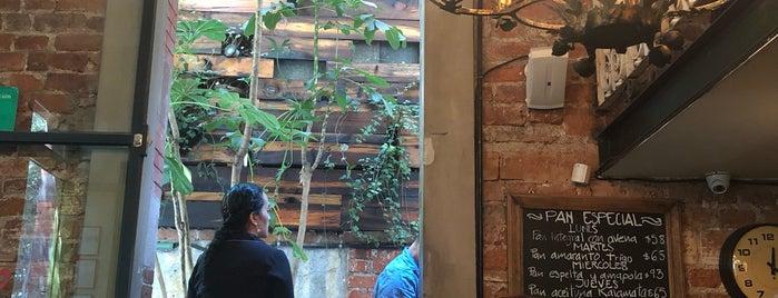 Cafe Nin is one of CDMX.