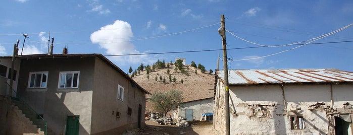 Yener Besi Çiftliği is one of สถานที่ที่ Erkan ถูกใจ.