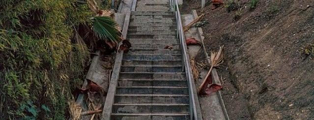 Micheltorena Steps is one of LA.