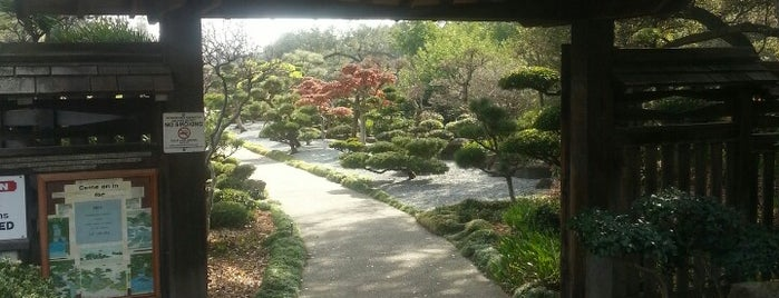 Japanese Garden & Senior Center (H.A.R.D.) is one of Bay Area Exploration Ideas.