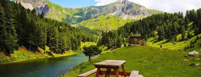 Pilav House is one of Tempat yang Disukai Mehmet.