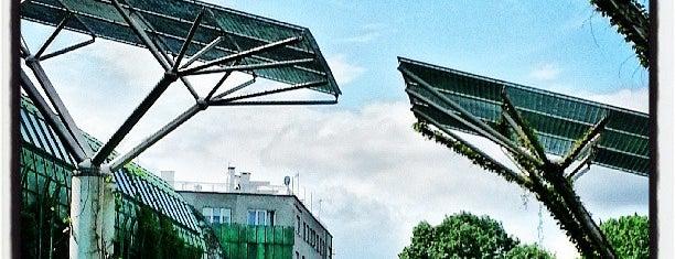 Ogród Botaniczny BUW is one of [To-do] Warsaw.