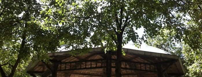 Square des Epinettes is one of Paris17 : Villiers - Batignolles - Epinettes.