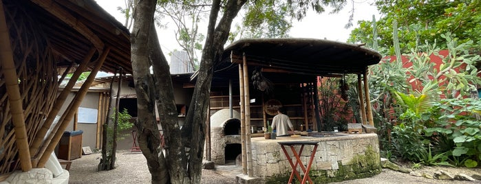 Humo Tulum is one of Locais curtidos por Janine.